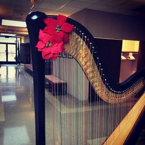 Christmas Harpist in Chicago