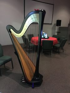 Quad Cities Harpist