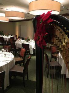 Central Michigan Harpist