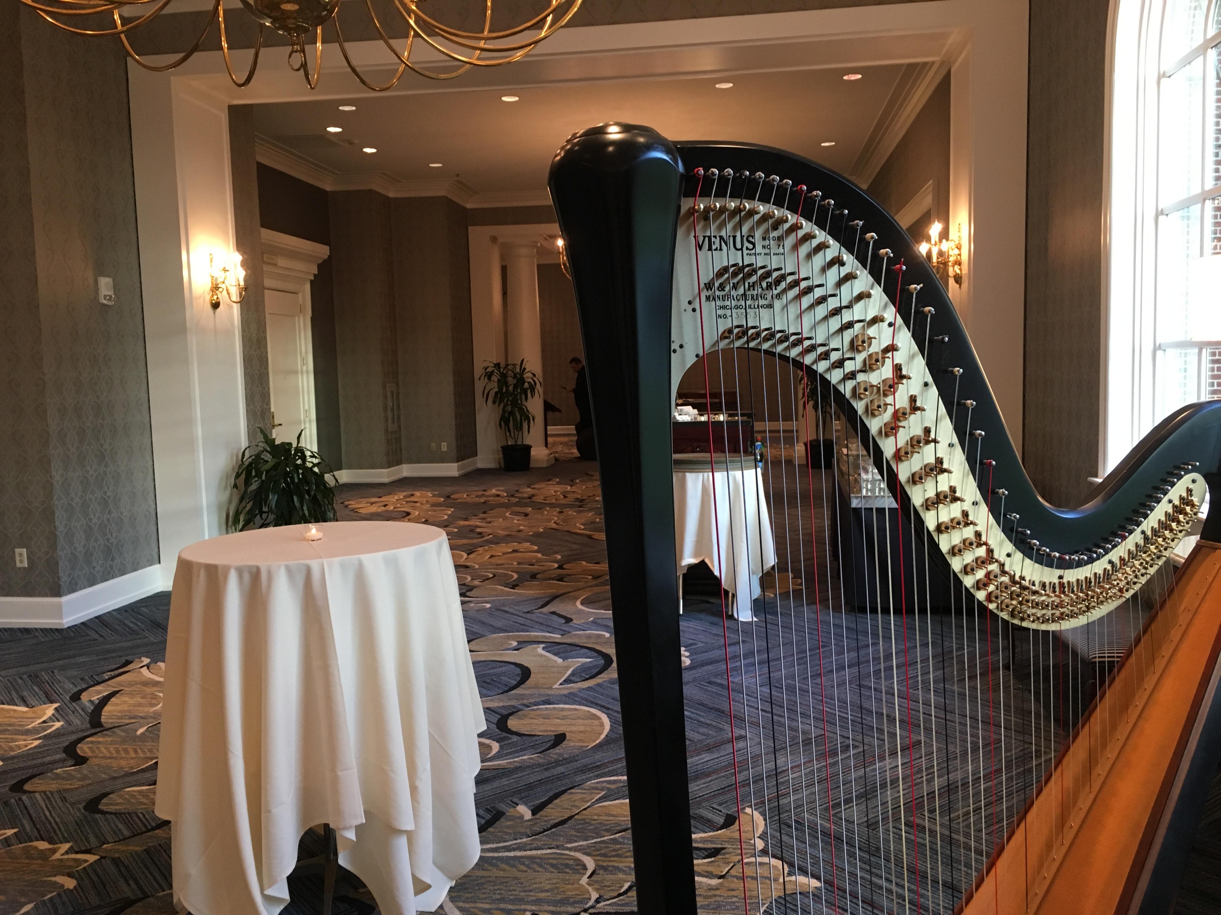 Detroit Wedding Harpist