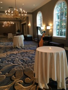 Dearborn Inn Wedding Reception - Lebanese Harpist