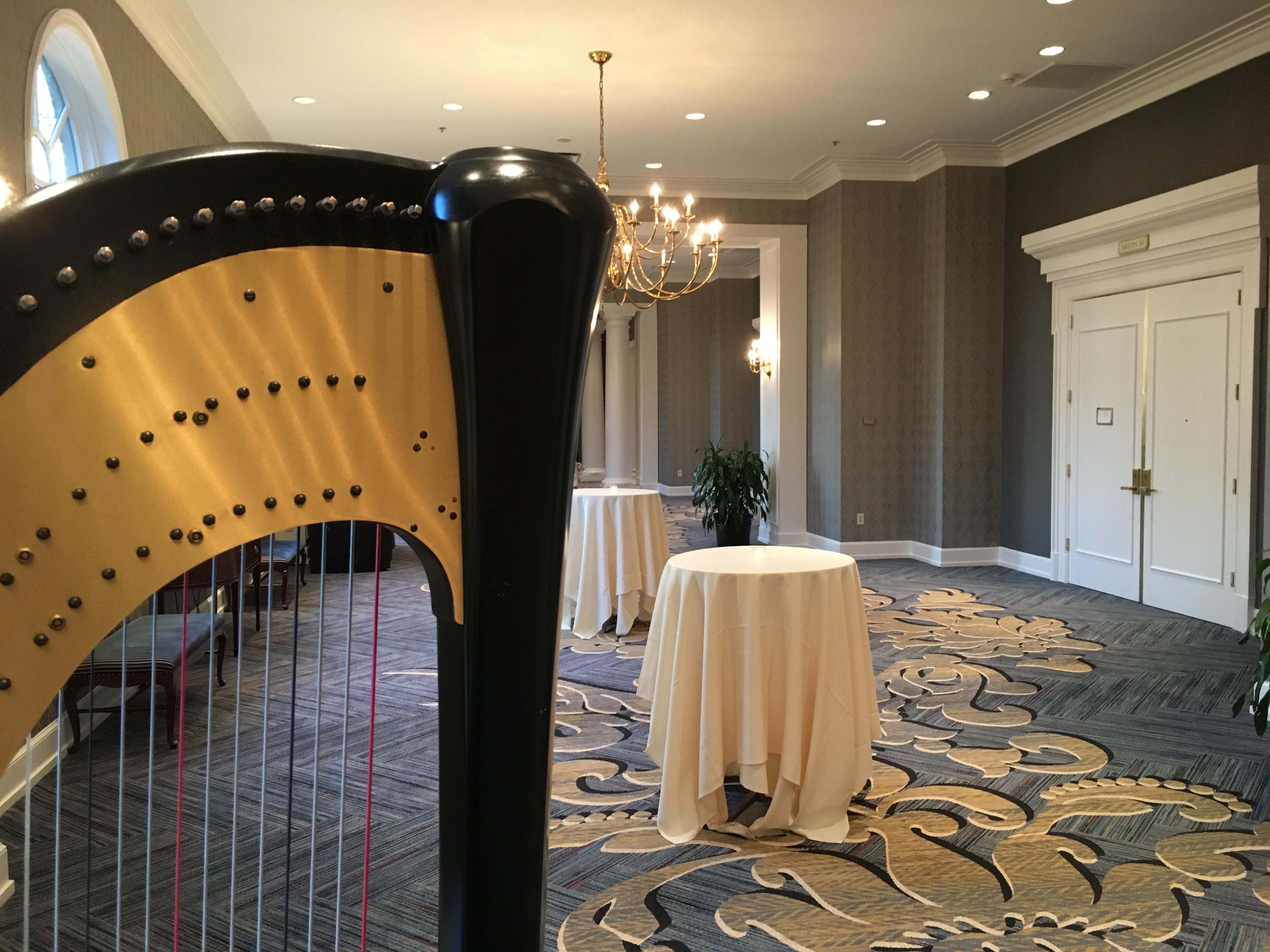 Dearborn Michigan Harpist