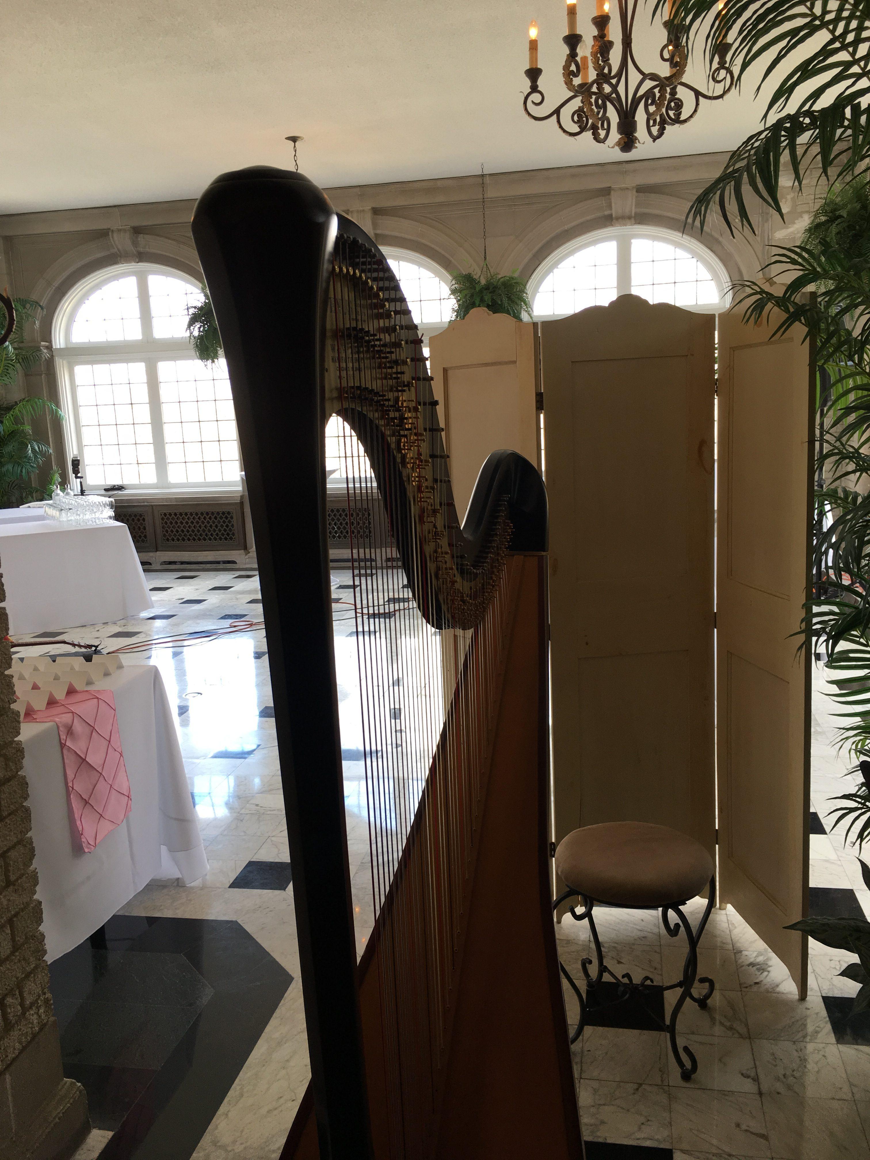 Indy Harpist - Wedding at Laurel Hall