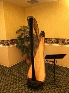 Elkhart Indiana Harpist