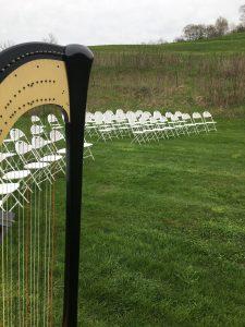 Harpist in Wisconsin