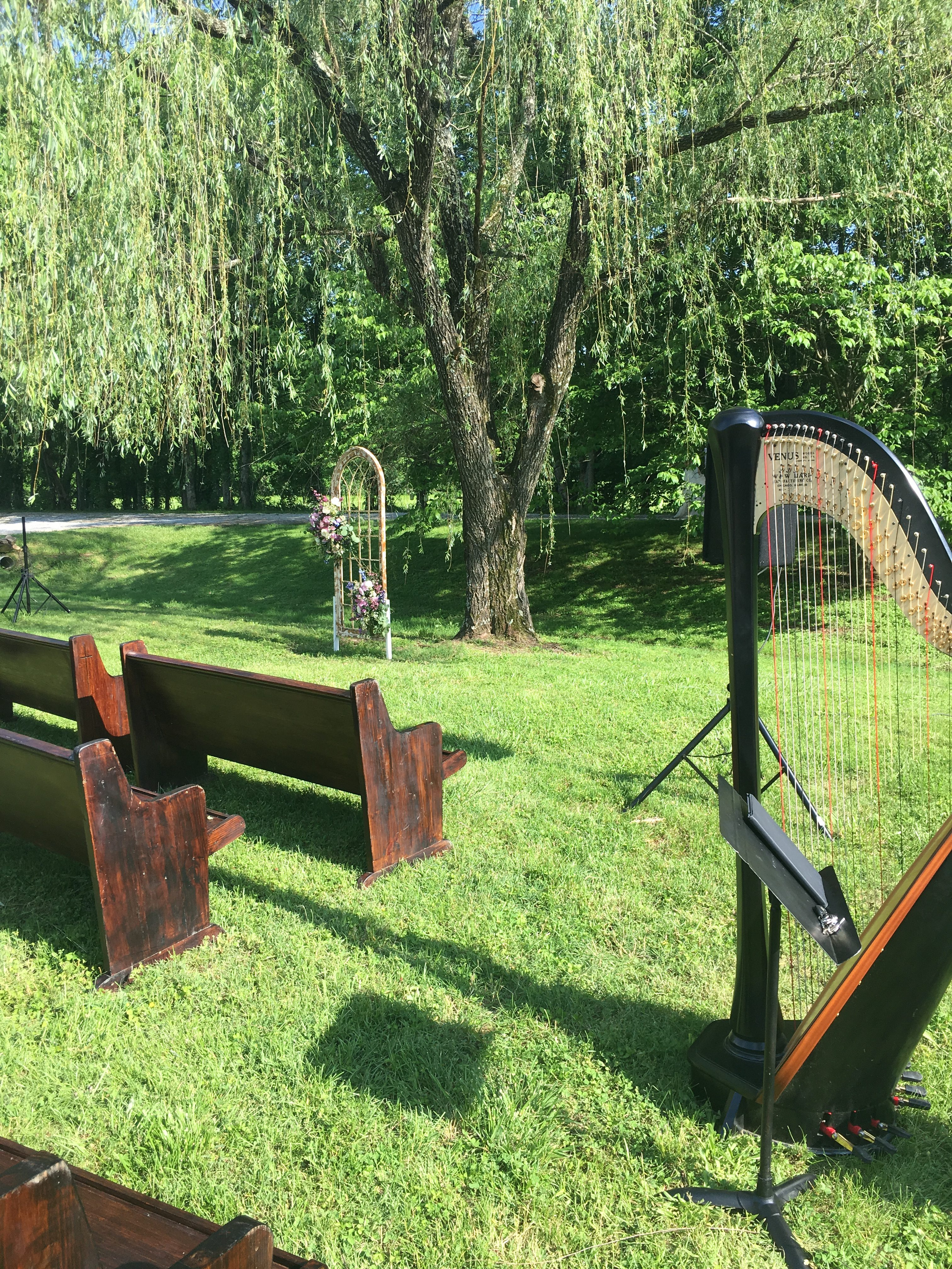 Huntsville Harpist