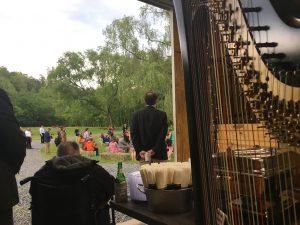 Alabama Harpist