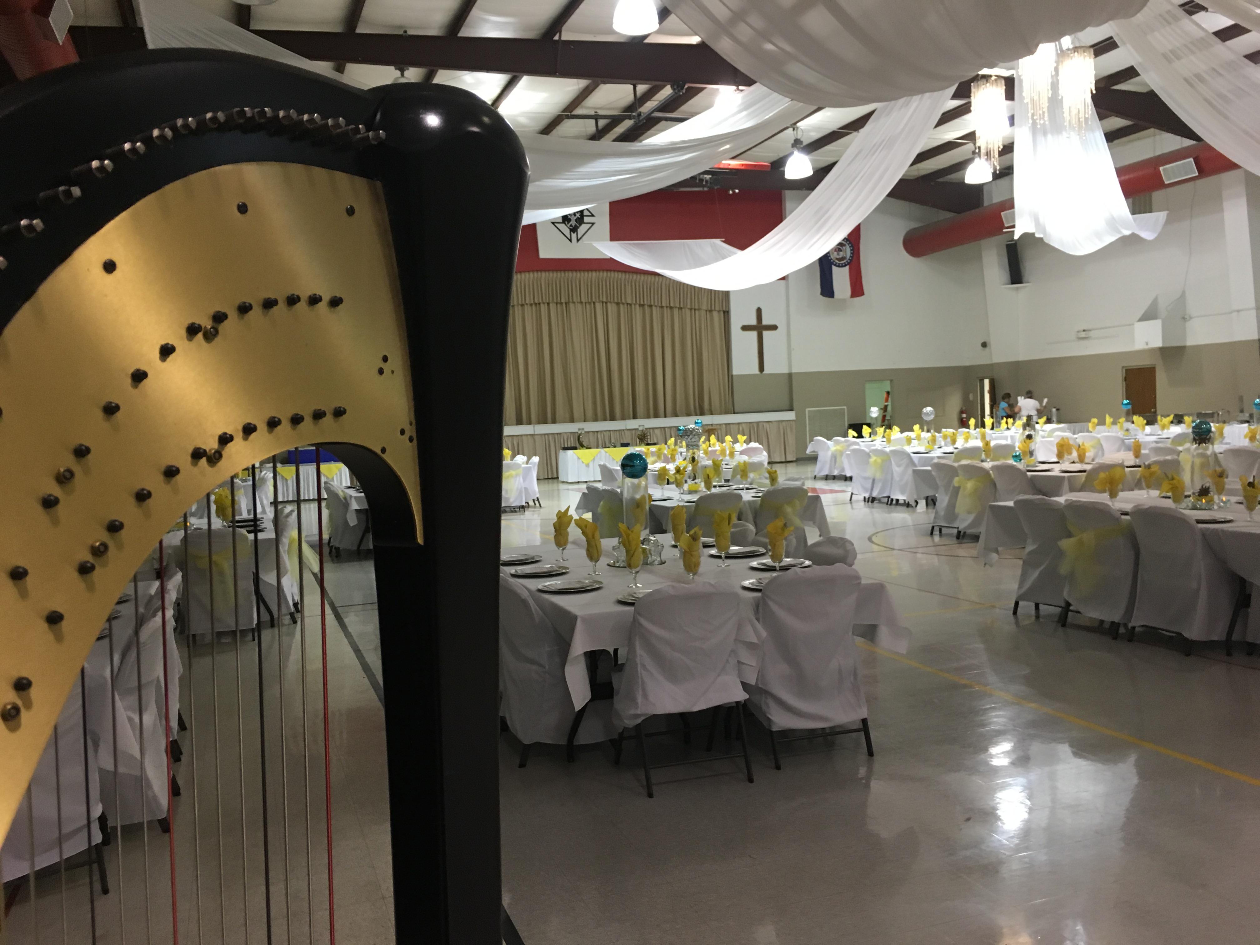 Missouri Harpist for Events