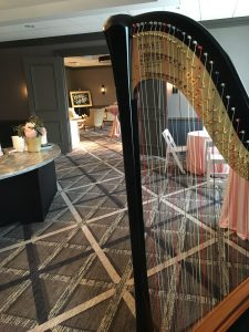 Chicago Wedding Harpist