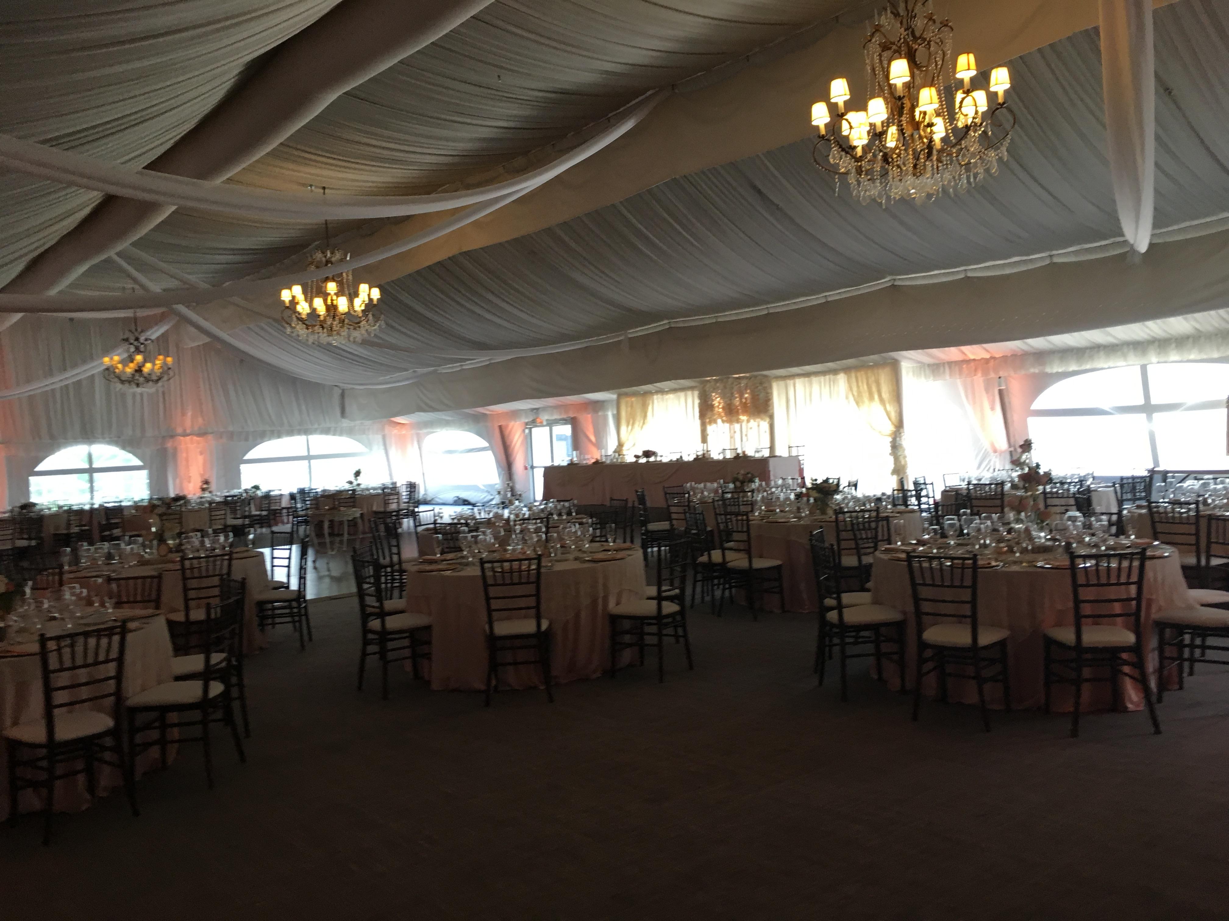 Chicago Wedding Reception Harpist