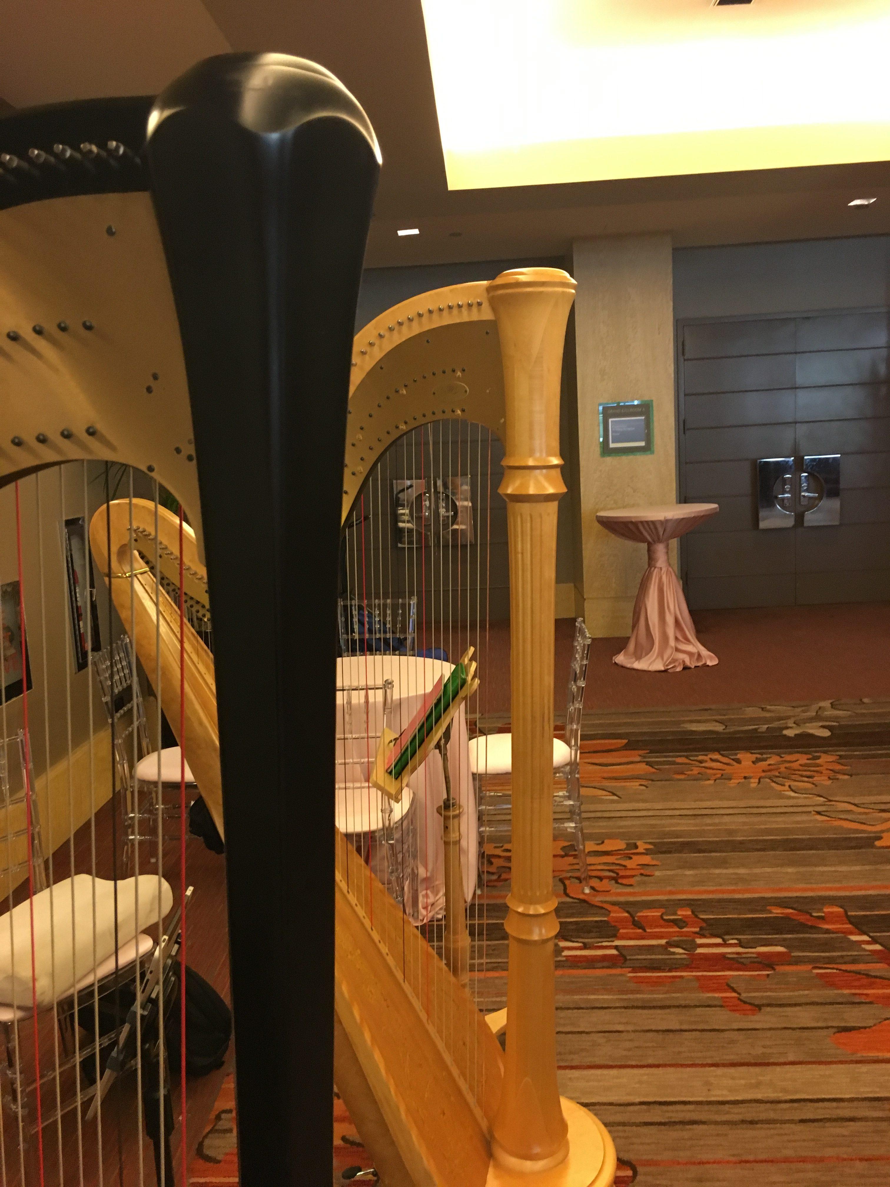 Harp Ensemble in Chicago
