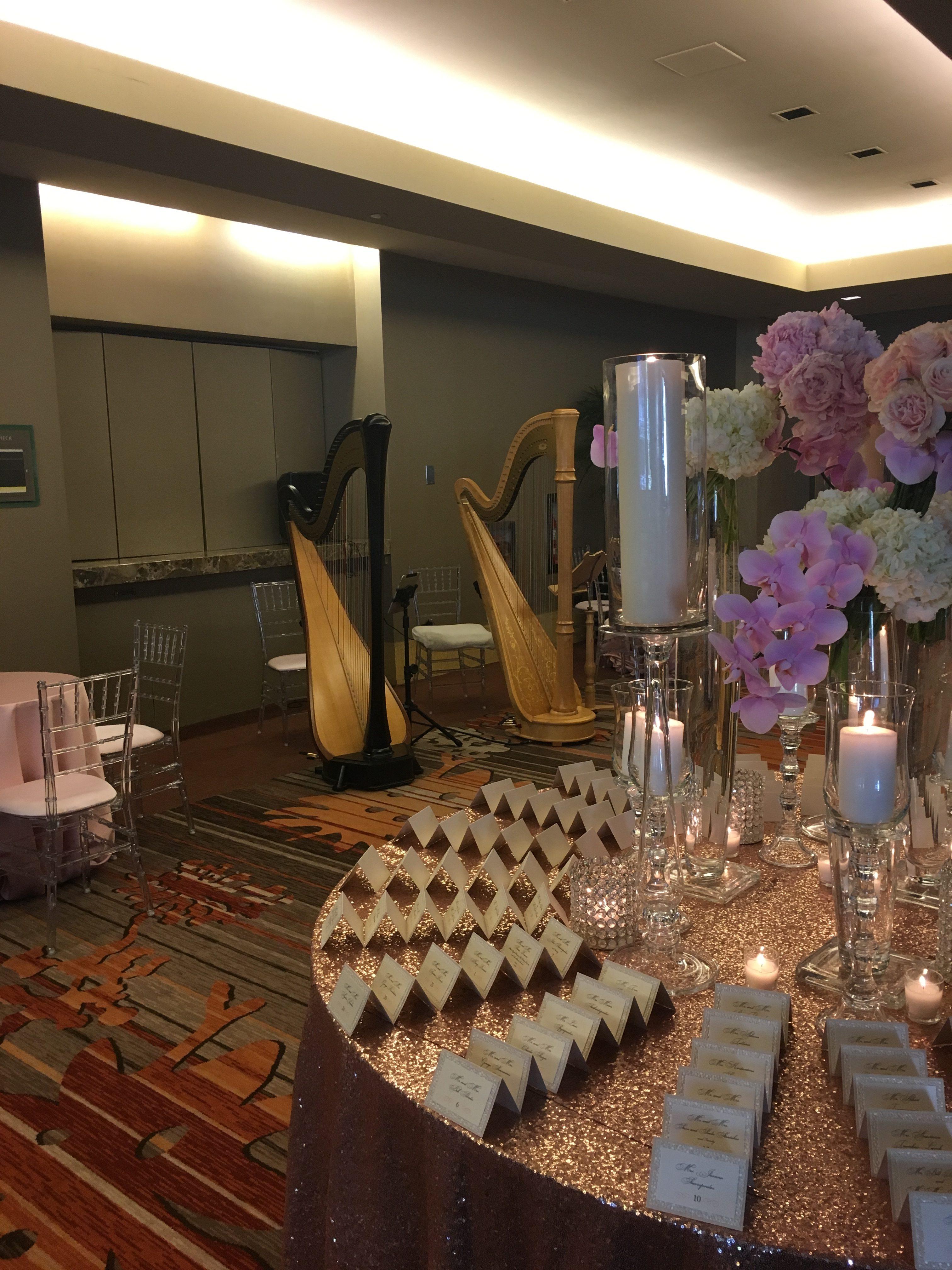 Chicago Harp Duet for Weddings