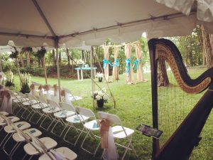 South Bend Wedding Harpist