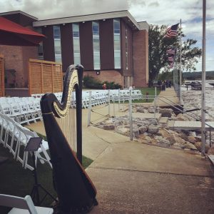 Wedding Harpist in Traverse City