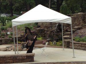 Wedding Harpist in Shelbyville
