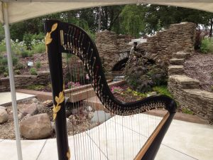 Harp Player in Shelbyville