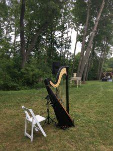 Princeton Illinois Harpist