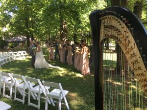 St. Louis Wedding Harpist