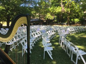 St. Louis Wedding Musician - Harp