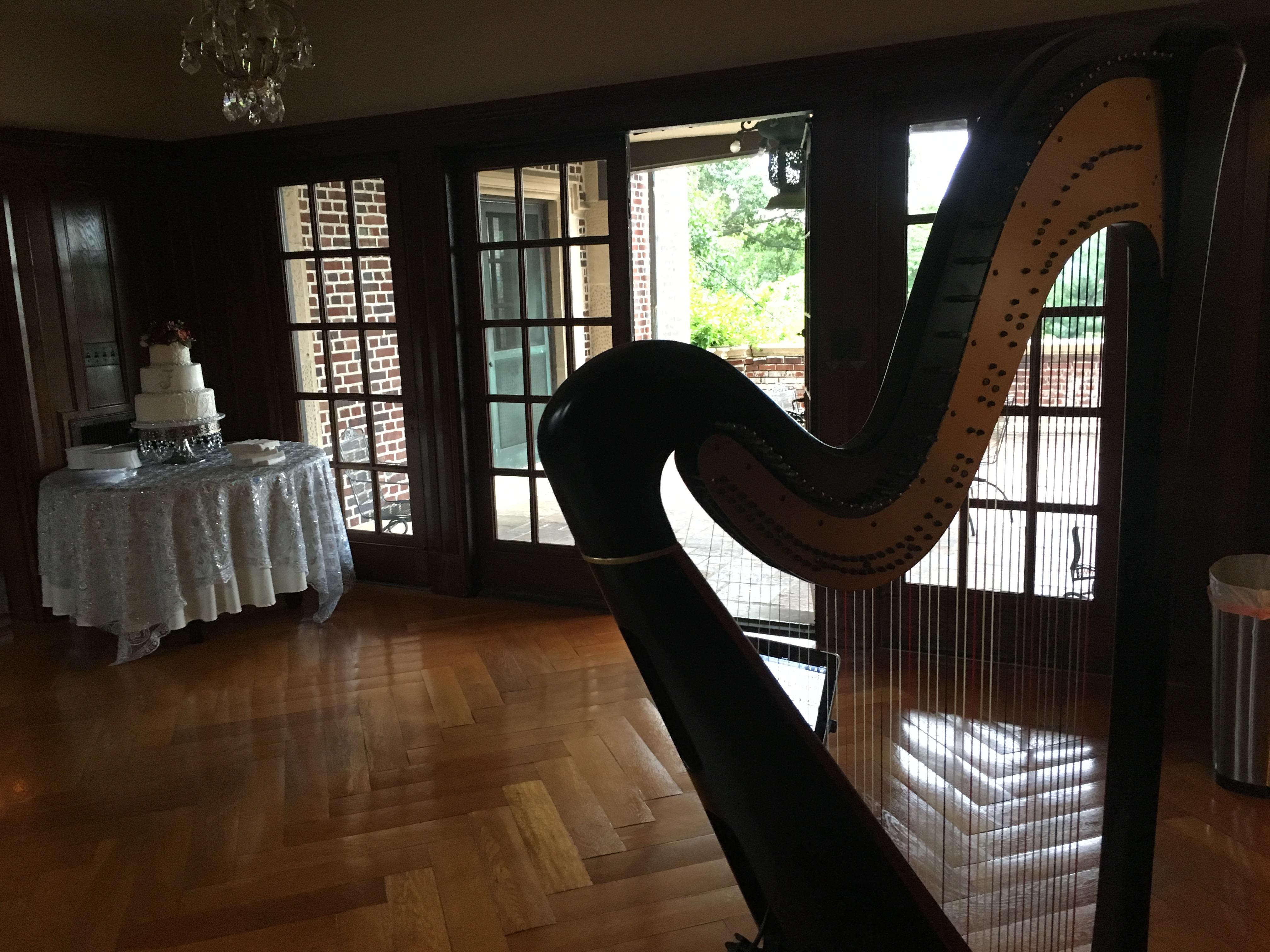 Ohio Harpist for Weddings