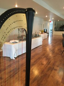 Harp Music for a Wedding Reception