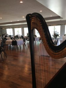 Wedding Reception Harpist Ohio