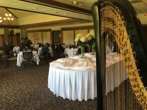 Muscatine Iowa Harpist