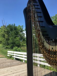 Des Moines Harpist for Weddings