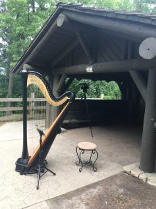 Wedding at Starved Rock - Harpist
