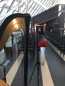 Cleveland Wedding Musician - Harp
