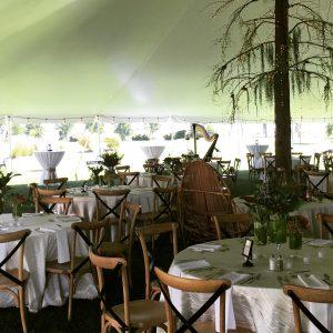 Traverse City Wedding Reception Harpist
