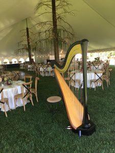 Northern MI Wedding Harpist