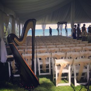 Port Huron Wedding Harpist