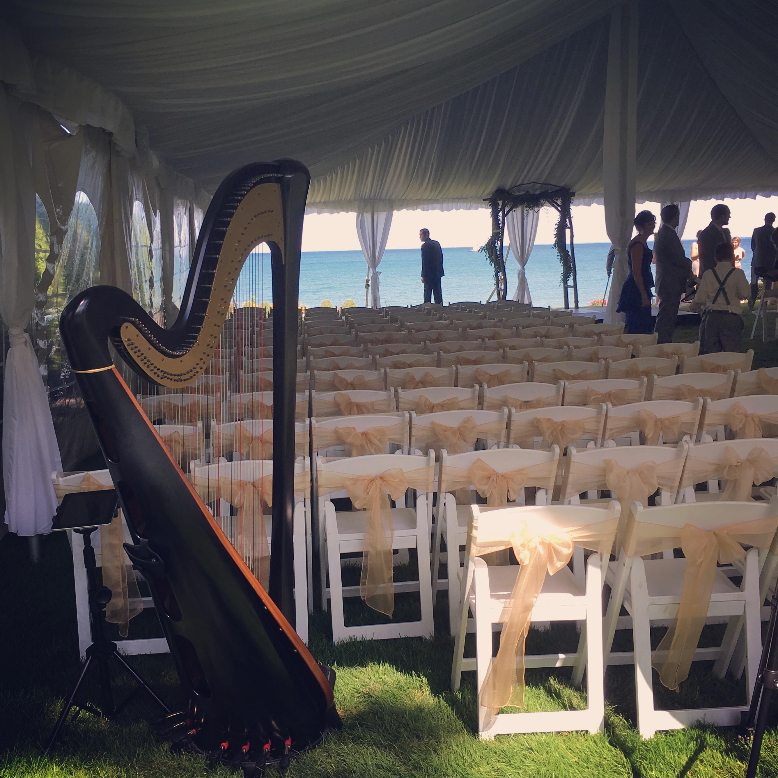 Port Huron Wedding Harpist