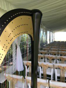 Port Huron Harpist