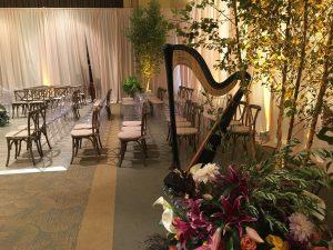 Cincinnati Wedding Harp Music