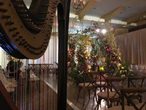 Cincinnati Harpist
