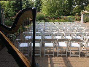 Northern MI Harpist