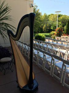 Chicago Wedding Harpist