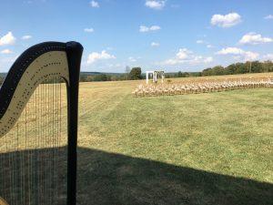 Southeast Missouri harpist