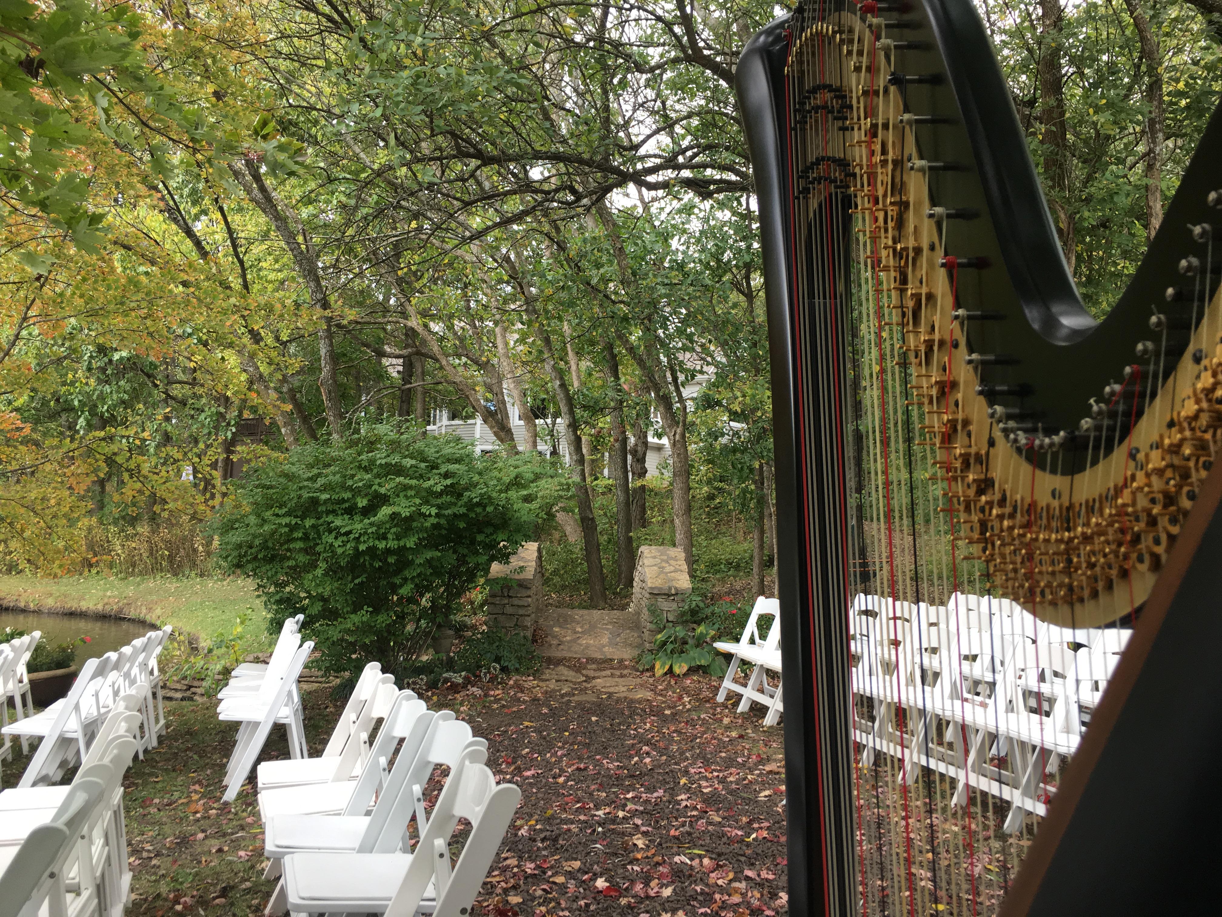 Kansas Harpist in Overland Park