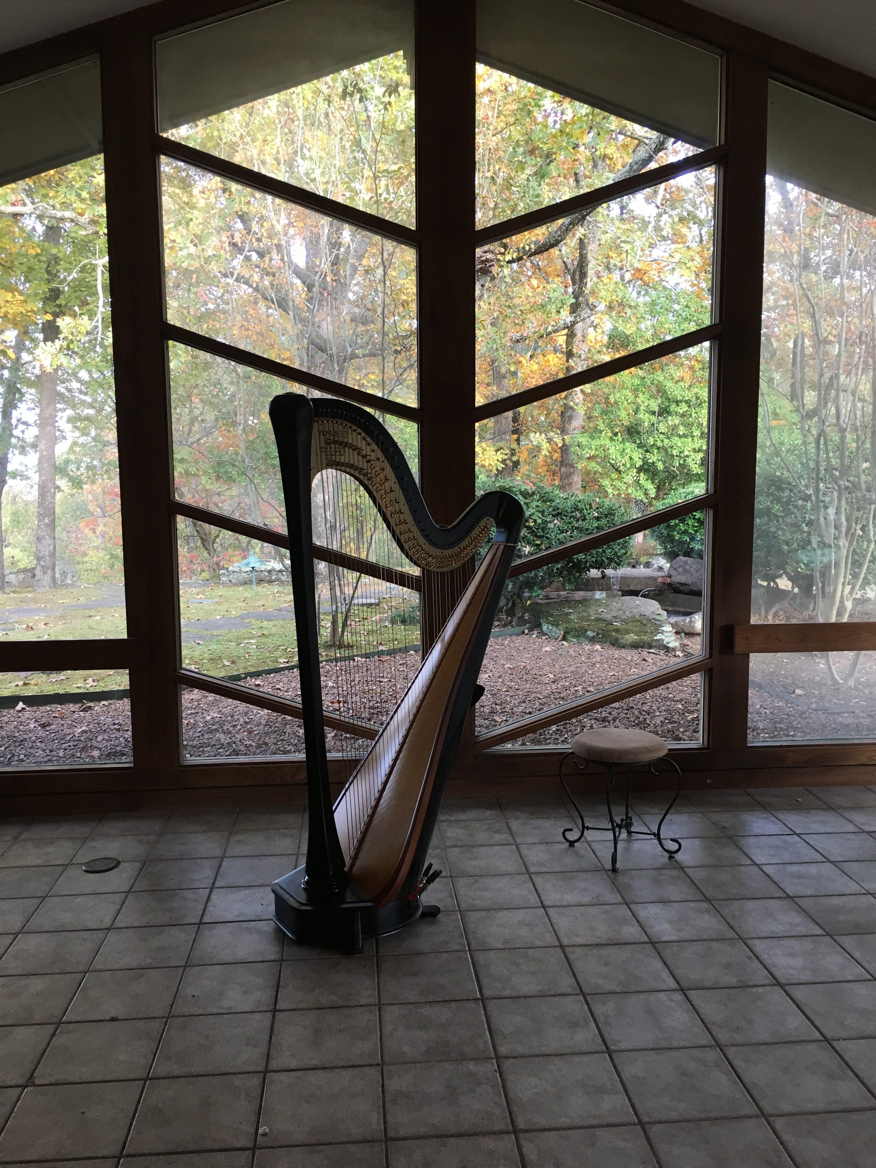 Arkansas Harpist for Weddings