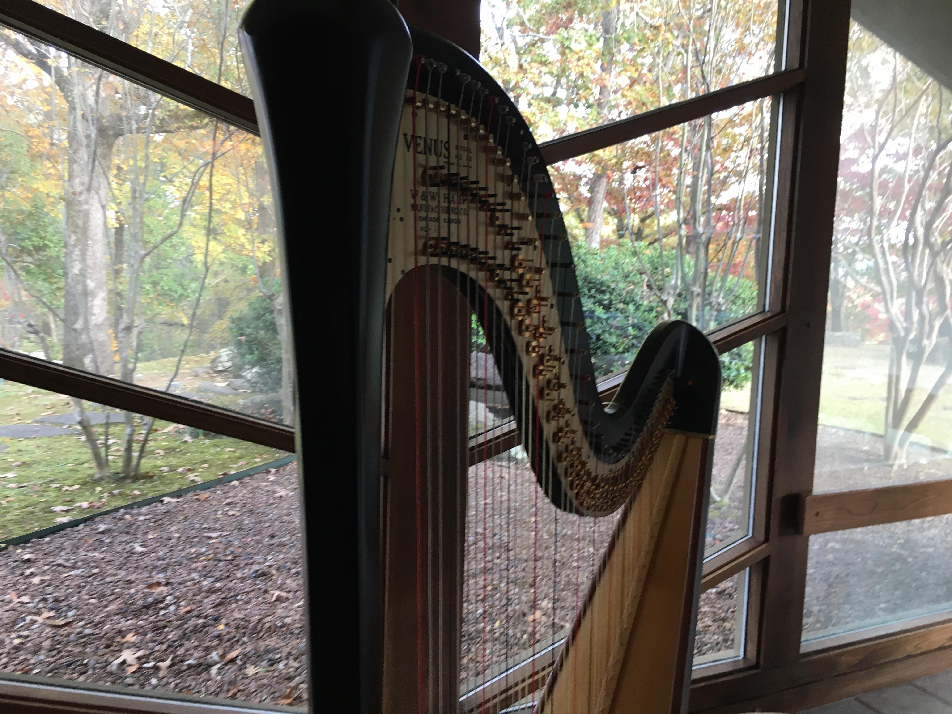 Northern Arkansas Harpist