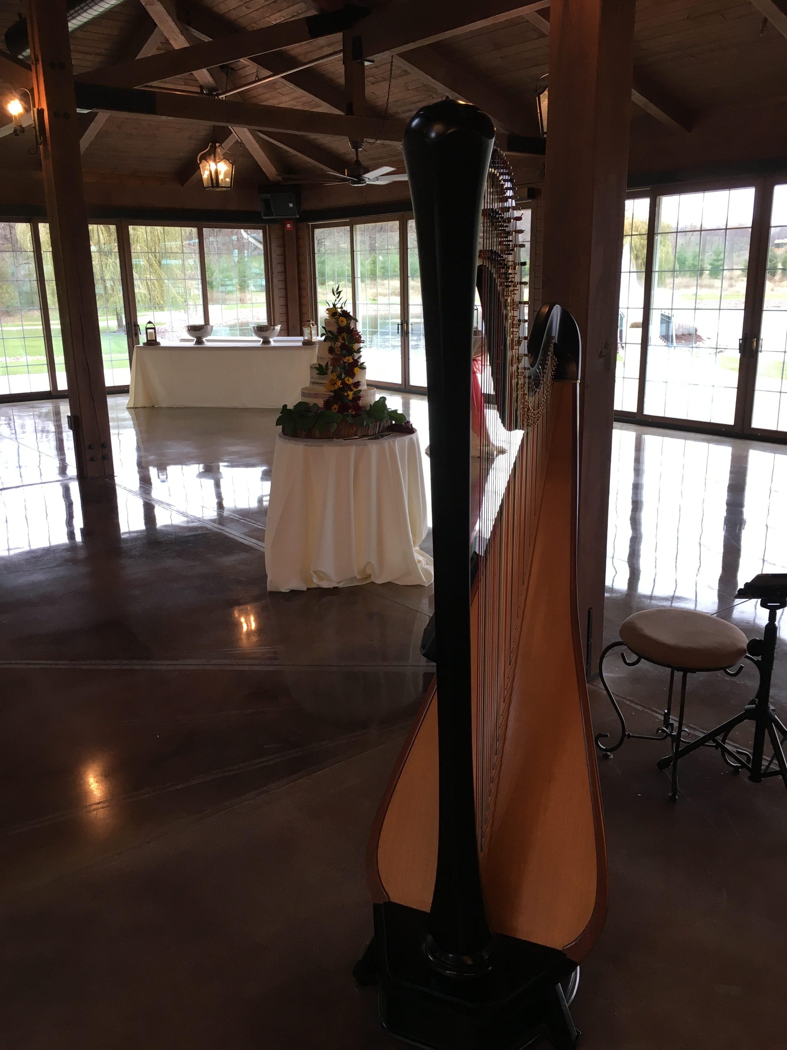 Wedding Harpist Rockford