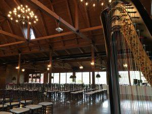 Rockford IL Wedding Harpist
