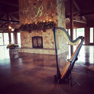 Rockford Wedding Harpist