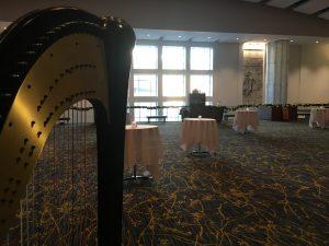 Harp Player Des Moines