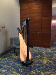 Des Moines Harpist for Hire