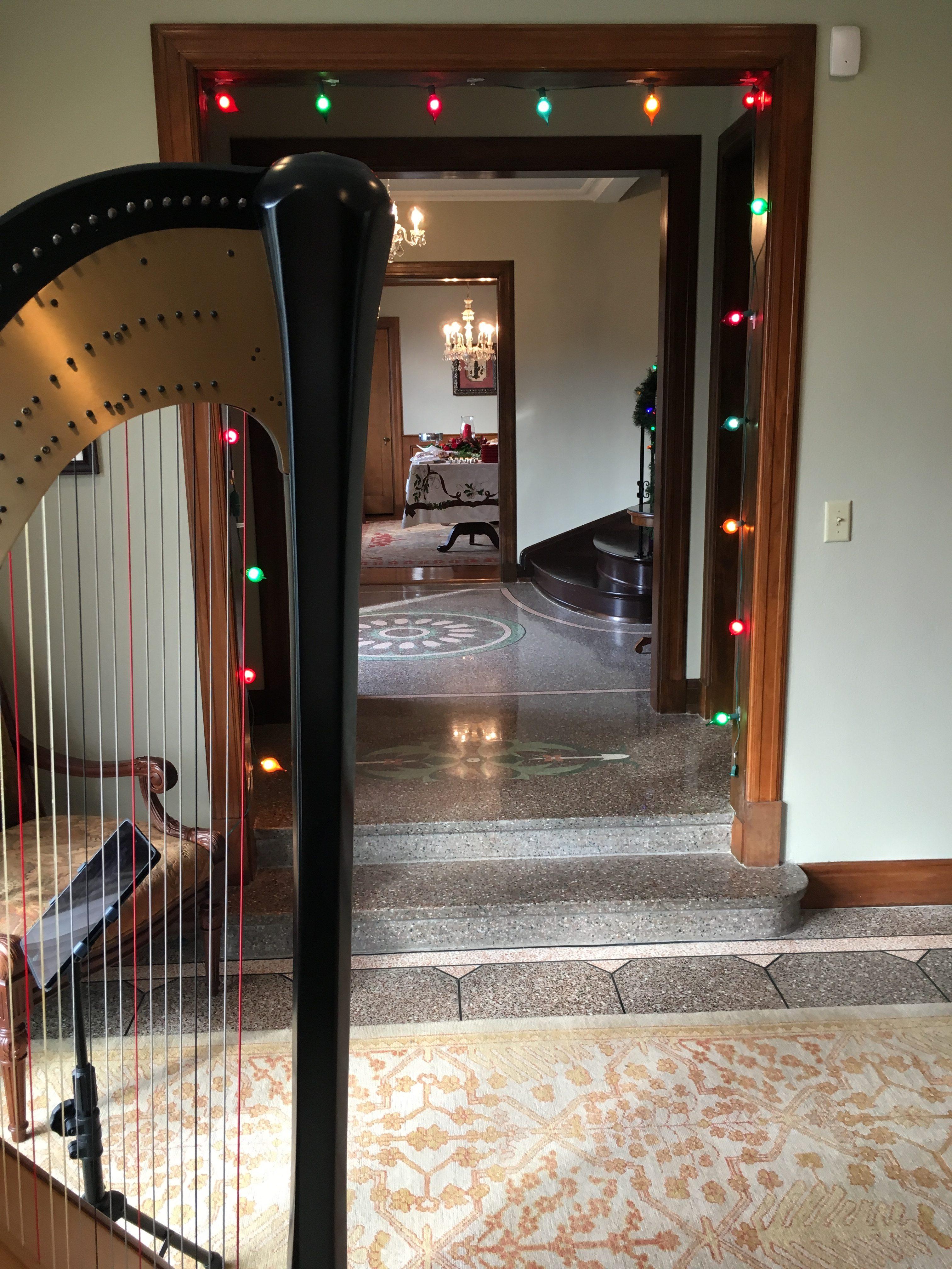Louisville Harpist