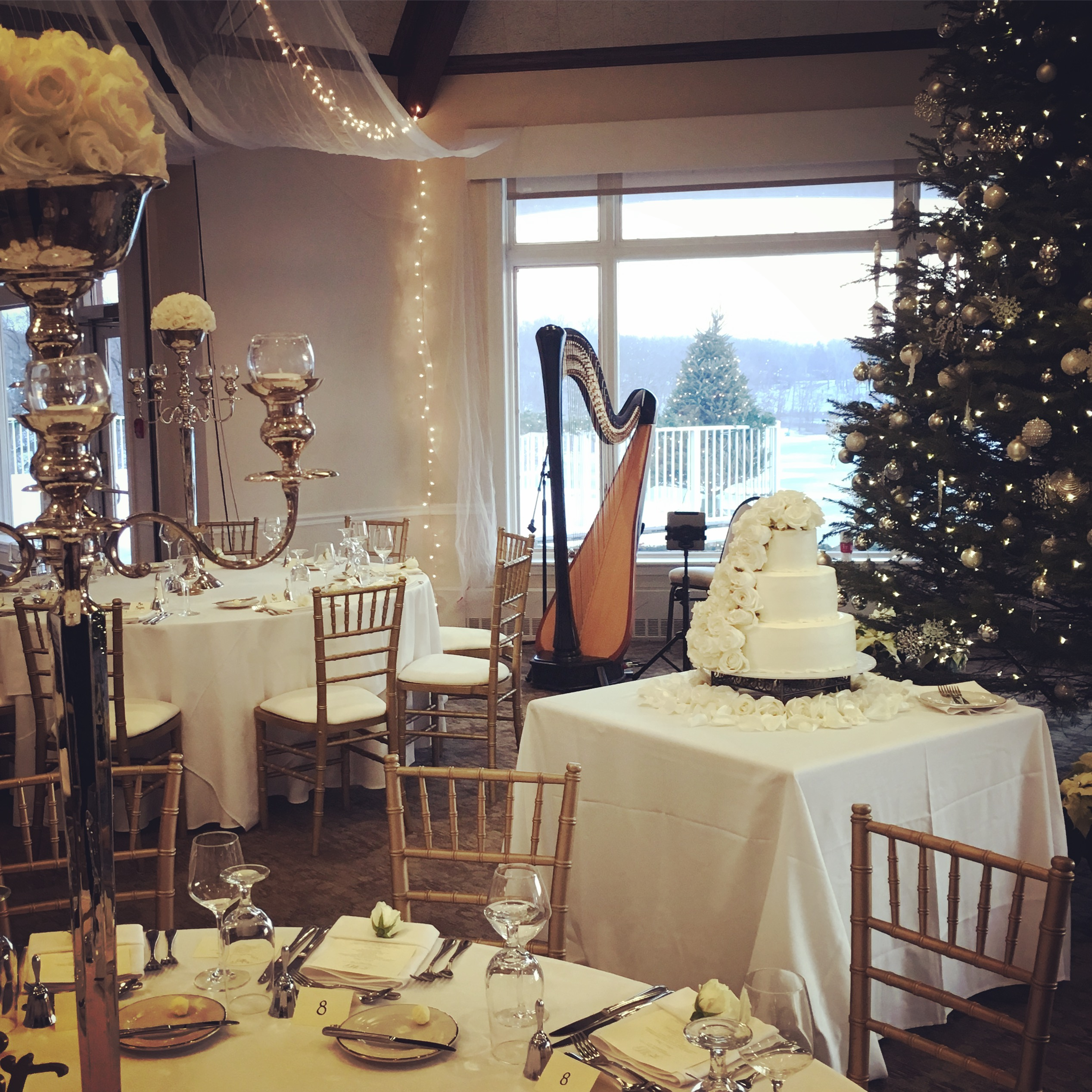 West Michigan Harpist for Weddings
